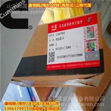 5367913电装2490油嘴 东风康明斯原装喷油器/道依茨代理