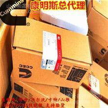 重庆CCEC康明斯K19 K38 K50喷油器3052255-20河北代理商/批发商