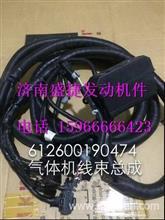 潍柴WP10CNG天然气动力发动机配件ECU线束612600190474/612600190474