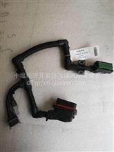 供应雷竞技康明斯国六电控发动机电控模块线束/5565151