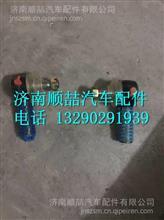 13128300X7004  1106630001646福田瑞沃横拉杆球头