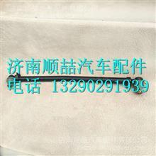 1318634000003福田瑞沃RC2转向直拉杆总成/1318634000003