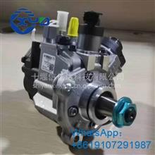 信亿达优势供应福田康明斯ISF3.8燃油泵总成0445020517 5303387