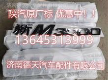 陜汽德龍  新M3000   X30000原廠標牌/DZ14251950001