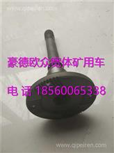 TZ56077000265重汽豪威60矿大江迈克贯通轴总成