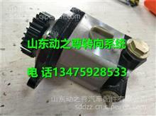 3406005-T0100东风雷诺转向油泵及齿轮合件/ 3406005-T0100
