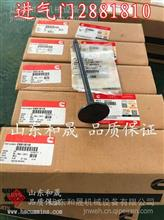 康明斯QSC系列气门组件排气门3800341  美国康明斯系列产品/3800341