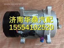 陕汽德龙F3000变排量压缩机总成(多楔带、ISM、国III)/ DZ95189154012
