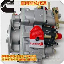 济宁山推SD32燃油泵4951495 PT燃油泵 重庆燃油泵工厂/SD32发动机总成价格