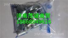 612630060200濰柴WP12發動機暖風回水管接頭