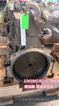 卡尔玛码头设备发动机总成康明斯QSM11发动机总成水泵4972857/卡尔玛码头设备发动机总成