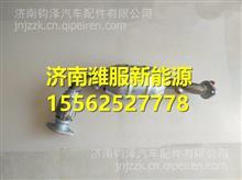 L0125020872A0福田奥铃M4三元催化器总成/L0125020872A0