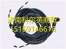 DZ96259774061 陕汽德龙新M3000配件ABS底盘电线束/DZ96259774061