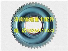 潍柴WD618发动机中间齿轮总成61800050098