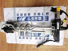 云内原厂尿素喷射泵X10006629D30TCIE-17006 HA10005194HA100048/HA10005194HA10006131HA10004889