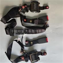东风旗舰天龙天锦原厂安全带总成厂家直销 事故车一站式选购/5810010-C5100