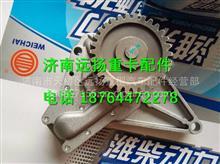 潍柴226B发动机机油泵/12166779