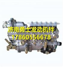玉柴BJ1E1发动机燃油泵总成 BJ1E1-1111100A-C32