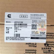 陕汽德龙奥龙工程机械西安康明斯ISM11原厂活塞环/4974319X
