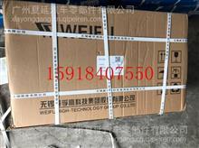 无锡锡柴动力WX6DL高压油泵/1111010-673-0000TW