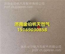 21150162D奔驰尿素计量阀尿素喷芯/ 21150162D