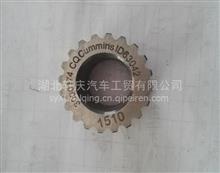 207253-20辅助传动齿轮