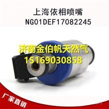 NG01DEF17082245南充天然气发动机上海依相喷嘴
