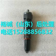 3071497重庆康明斯NT855柴油发动机喷油器/3071497