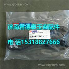 YC80-8PK-1460B玉柴发动机水泵多楔带/YC80-8PK-1460B