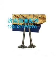 VG1560050042重汽豪沃发动机气门总成/VG1560050042