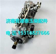 BYB00-1111100-493玉柴6108喷油泵总成/BYB00-1111100-493