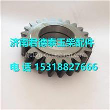 430-1011011玉柴6108机油泵中间传动齿轮/ 430-1011011