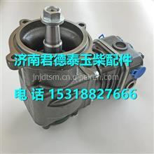 D12F5-3509100D玉柴YC4D130空压机总成/D12F5-3509100D