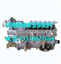 BJ1E1-1111100A-C32玉柴BJ1E1发动机燃油泵总成 /BJ1E1-1111100A-C32