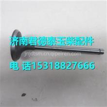 J3000-1003103A玉柴YC6105QC柴油机排气门/J3000-1003103A