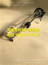 福田瑞沃260电子燃油传感器油浮子/G0376030011A0