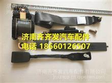 重汽豪沃轻卡悍将统帅轻卡主座椅安全带总成/LG1611560110