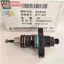 泵油系总成B917-040S型号X917-010S重庆燃油系统制造/川渝代理