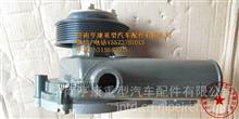 A3100-1307010C玉柴260马力水泵总成