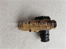供应雷竞技新款雷竞技App下载KL(进口)排气制动电磁阀总成/3754010-TL380