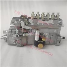101602-8630 101605-0390高压柴喷燃油大泵/101602-8630 101605-0390