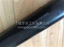油缸5003010-S2F500Y