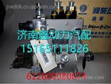 潍柴WP10共轨泵 612600080674/潍柴WP10共轨泵 612600080674
