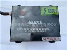 合肥国轩高科高压配电箱  DK1518   高压配电箱 /DK1518