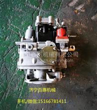 PT泵3655100 M240船机康明斯NT855-M燃油泵3655100 PT泵维修/3655100