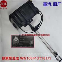 好帝尿素泵总成WG1034131181/1重汽豪沃T7HT5G尿素泵箱集成式原厂/WG1034131181/1