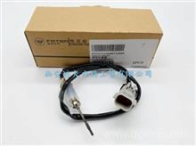 原装排气温度传感器F1116712501027A2质保原装 优势批发/F1116712501027A2(进气)