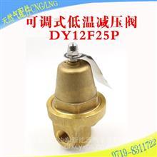 DY12F-25P富瑞减压阀TS2710556可调式低温减压阀经济阀天然气配件DY12F-25P
