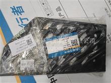 EZ19201241200陕汽轻卡德龙K3000驾驶室右踏板/EZ19201241200