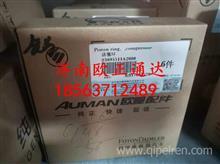 S3695511A2080欧曼福田康明斯发动机活塞环/S3695511A2080
